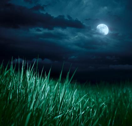 Луна силы трав_2